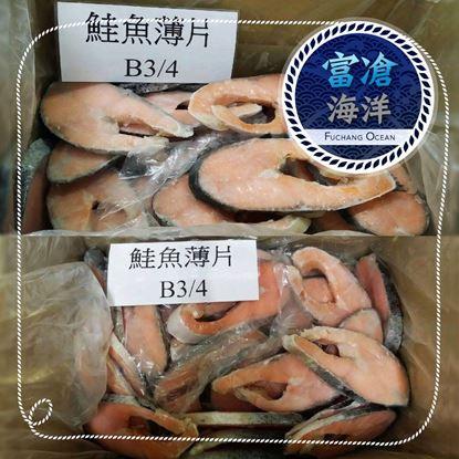 鮭魚薄片B