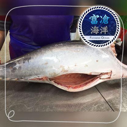 Picture of 超低溫鮪魚-切片切丁