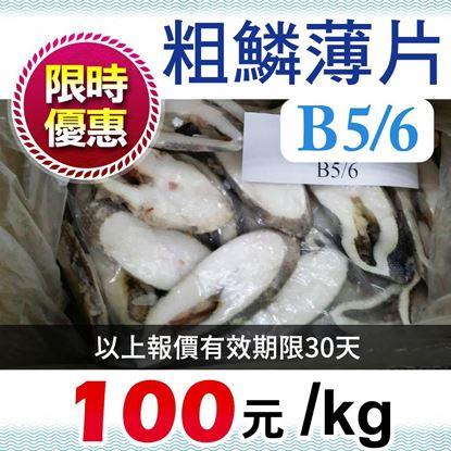 圖片 粗鱗B5/6薄片(有洞) Rough Skin Oilfish slice body part (5/6)